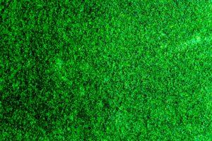 kunstgras tapijt